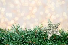 Ramas de árbol de navidad en un fondo brillante Imagen de archivo libre de regalías