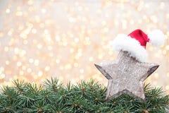 Ramas de árbol de navidad en un fondo brillante Fotografía de archivo