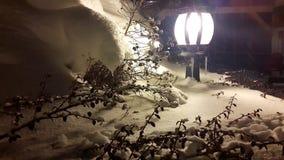 Ramas de árbol de navidad y bayas rojas en una linterna debajo de una nieve que cae almacen de metraje de vídeo