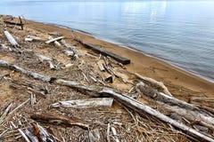 Ramas de árboles de la madera de deriva y madera de construcción de la basura en la playa Fotos de archivo