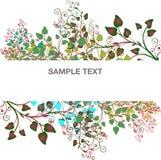 Ramas de la bandera de árboles y de los pétalos Imagen de archivo libre de regalías