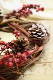 Ramas de la guirnalda de la Navidad fotografía de archivo