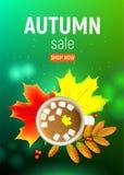 Ramas de la hoja de arce y del serbal del otoño con ashberry y la taza de café con la melcocha en un fondo verde Vector Fotos de archivo libres de regalías