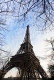 Ramas de la torre Eiffel y de árbol en París imagen de archivo