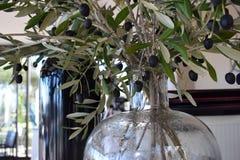 Ramas de olivo en un florero de cristal foto de archivo libre de regalías