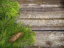 Ramas de árbol de pino en la madera del vintage Foto de archivo