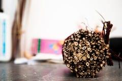 Ramas decorativas secas del manojo Foto de archivo libre de regalías