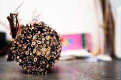 Ramas decorativas secas del manojo Fotografía de archivo libre de regalías