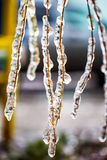 Ramas del abedul cubiertas con hielo Foto de archivo