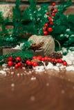 Ramas del abeto cubiertas con nieve y canela en la caja y el acebo en una tabla de madera con una pared de ladrillo La Navidad Fotografía de archivo libre de regalías