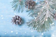 Ramas del abeto cubiertas con nieve y conos Concepto del Año Nuevo Imagenes de archivo