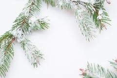 Ramas del abeto y decoraciones nevadas de la Navidad con el espacio para el texto Fotos de archivo