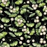 Ramas del biloba del ginkgo de la acuarela Fotos de archivo