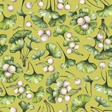 Ramas del biloba del ginkgo de la acuarela Imagen de archivo