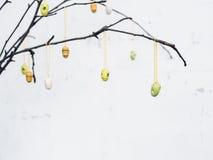 Ramas desnudas con los huevos coloridos de la decoración de Pascua Fotografía de archivo