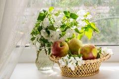 Ramas florecientes de la manzana y de manzanas en una cesta fotografía de archivo libre de regalías
