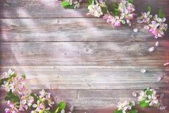 Ramas florecientes de la primavera en fondo de madera Foto de archivo libre de regalías
