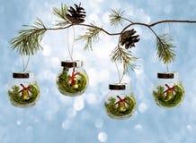 Ramas naturales del árbol de navidad con un juguete de cristal de la Navidad en fondo azul foto de archivo libre de regalías