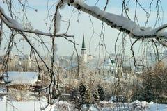 Ramas nevadas contra la mezquita blanca Foto de archivo libre de regalías