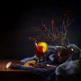 Ramas reflexionadas sobre del vino y del escaramujo Fotos de archivo libres de regalías