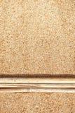 Ramas secas en la arena Foto de archivo libre de regalías