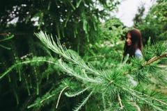 Ramas verdes del pino en el fondo del bokeh de la muchacha foto de archivo libre de regalías