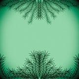 Ramas verdes que forman un marco en un fondo verde en colores pastel fotografía de archivo libre de regalías