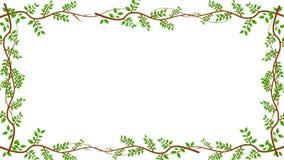 Ramas y hojas que crecen en un marco en Alpha Channel libre illustration