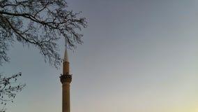 Ramas y mezquita fotos de archivo libres de regalías