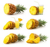 Ramassage d'ananas Photographie stock