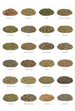 Ramassage d'herbe Photos stock
