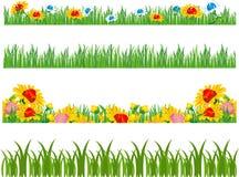 Ramassage d'herbes et de fleurs Image stock