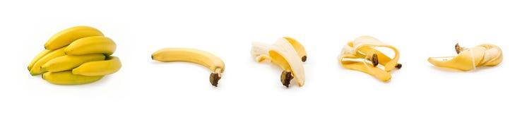 Ramassage de banane images stock