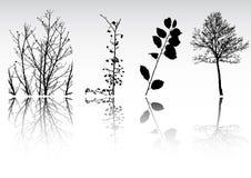 Ramassage de clipart de vecteur d'arbre Photographie stock