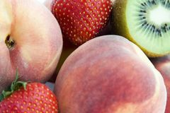 Ramassage de fruit photo stock