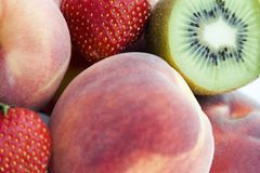 Ramassage de fruit Photos stock