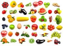 Ramassage de fruits et légumes Images libres de droits