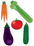 Ramassage de légumes frais Photo libre de droits