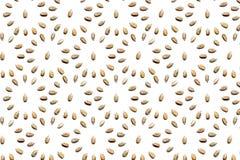 Ramassage de noix photo stock