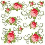 Ramassage de roses illustration stock