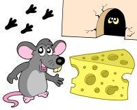 Ramassage de souris Images libres de droits