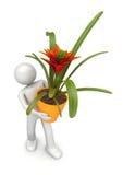 Ramassage de styles de vie - fleuriste avec le flowerpot illustration libre de droits