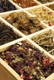 Ramassage de thé. image libre de droits