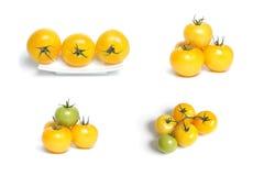 Ramassage de tomates organiques jaunes photo libre de droits