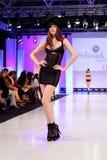 Ramassage de vêtement de lingerie de Selmark Image libre de droits