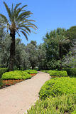 Ramat Hanadiv, Israel. Road in Ramat Hanadiv memorial gardens, Israel Royalty Free Stock Photos