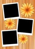 Rambild med solblomman på wood bakgrund Royaltyfri Illustrationer