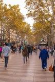 The Ramblas of Barcelona Royalty Free Stock Image