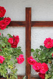 Rambler rosebush and wooden cross Stock Photography