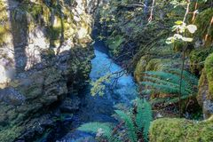 Rambling river through a gorge stock image